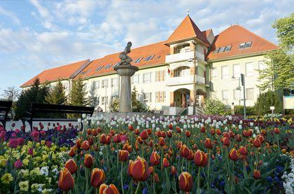 Медицинская специализациях термальных курортов Венгрии
